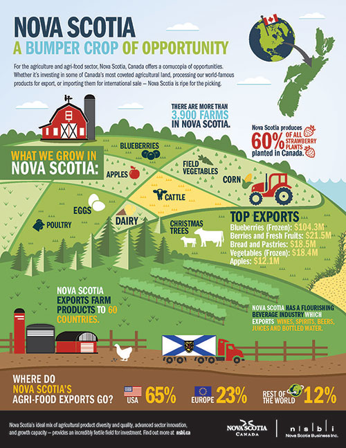 Agri-food infographic