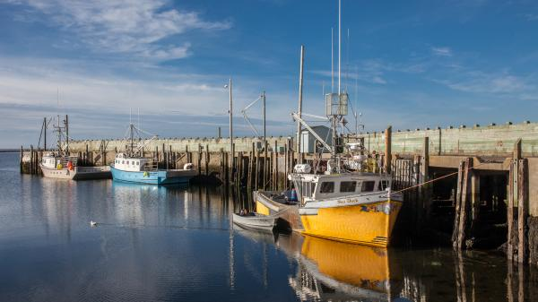 Fishing Vessel in Nova Scotia