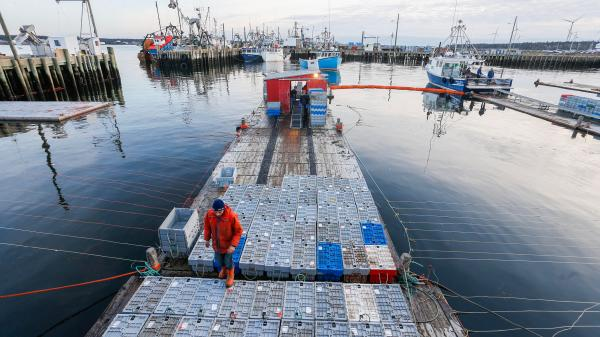 A fishing dock with traps and people, fishing vessels in the distance